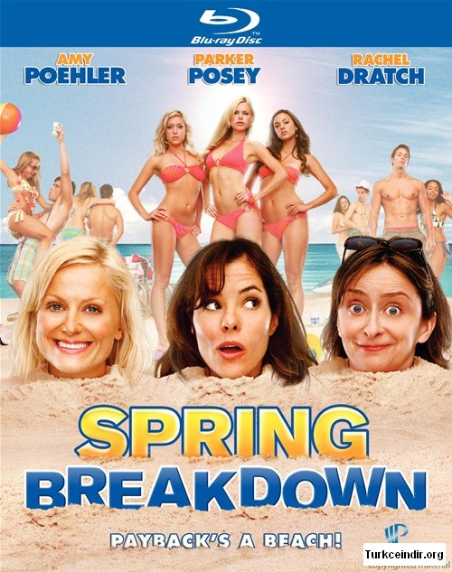 spring breakdown film izle
