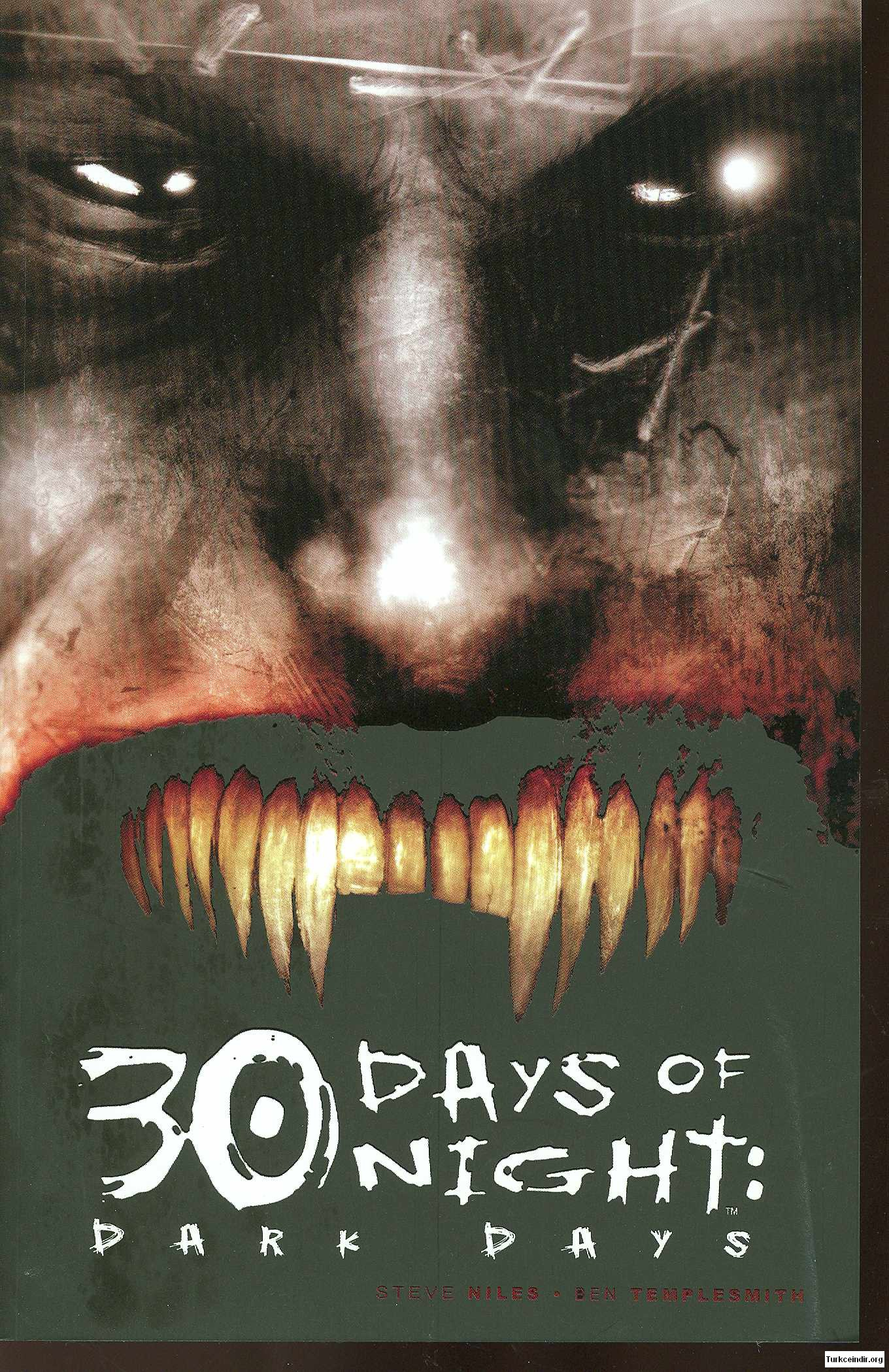 30 Days Of Night Dark Days film izle