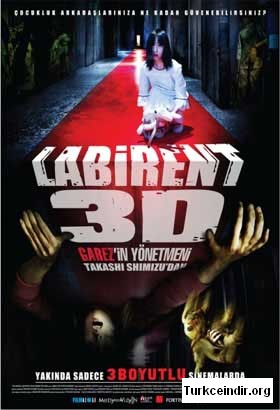 Labyrinth 3D : The Shock