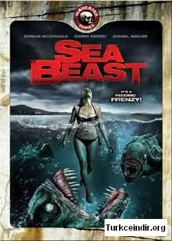THE SEA BEST