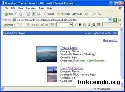 The Download Toolbar